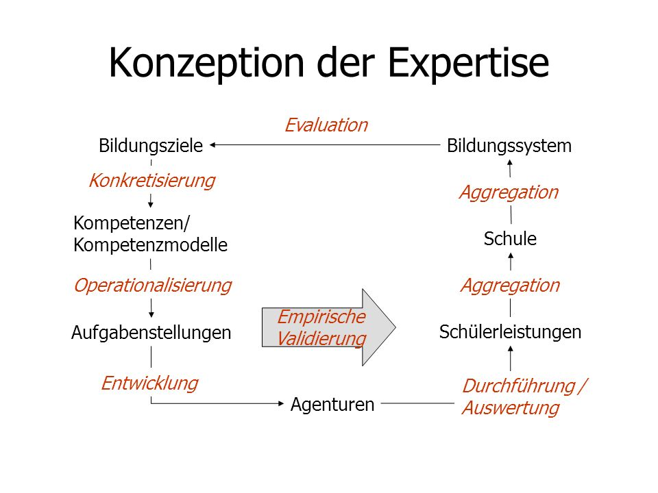 Konzeption der Expertise