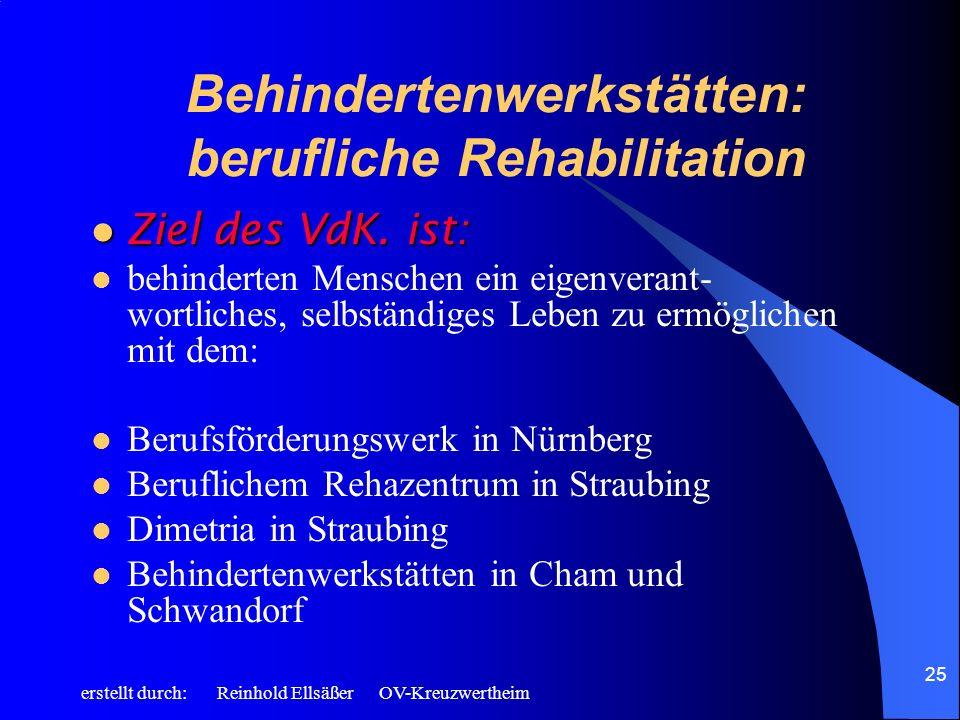 Behindertenwerkstätten: berufliche Rehabilitation