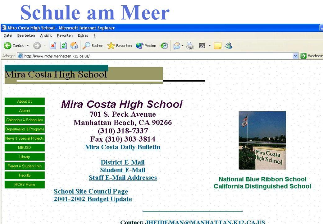Schule am Meer Interaktive Webseite Ergebnisse besprechen