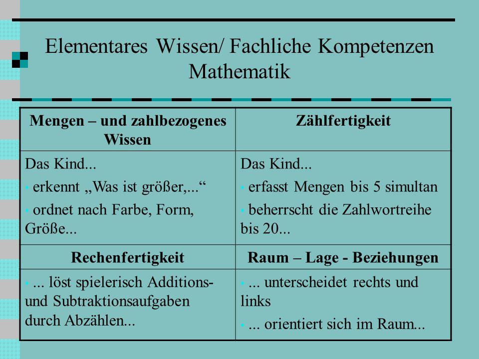 Elementares Wissen/ Fachliche Kompetenzen Mathematik