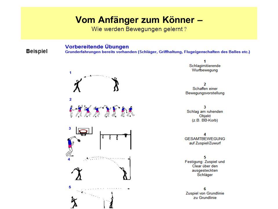 Vom Anfänger zum Könner – Wie werden Bewegungen gelernt