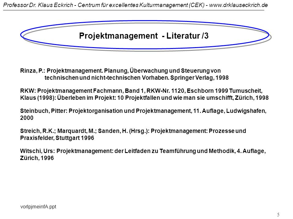 Projektmanagement - Literatur /3