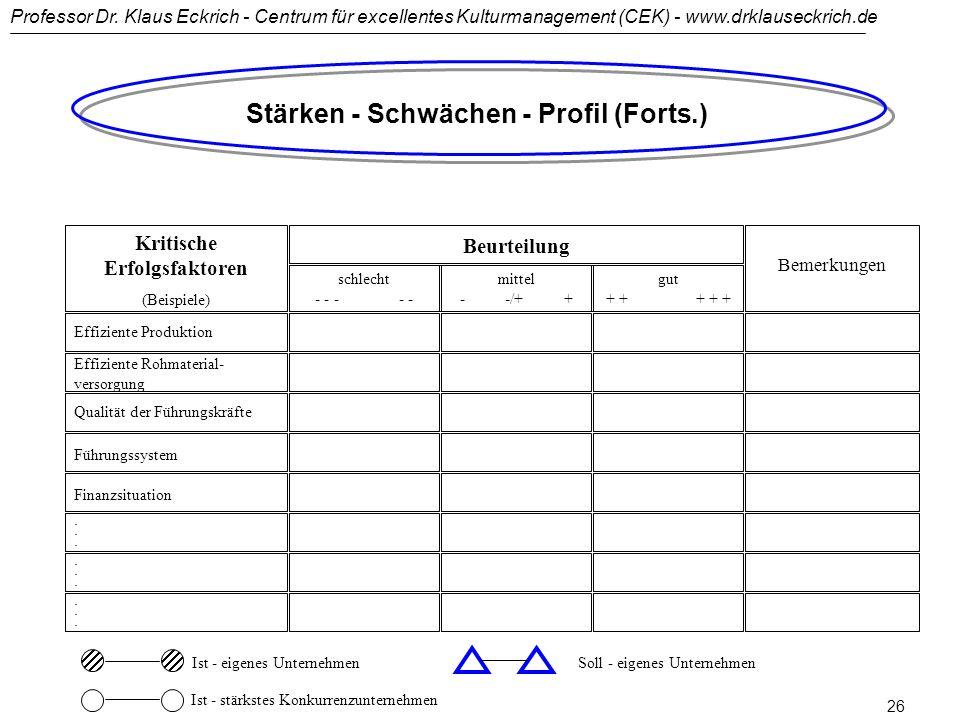 Stärken - Schwächen - Profil (Forts.) Kritische Erfolgsfaktoren