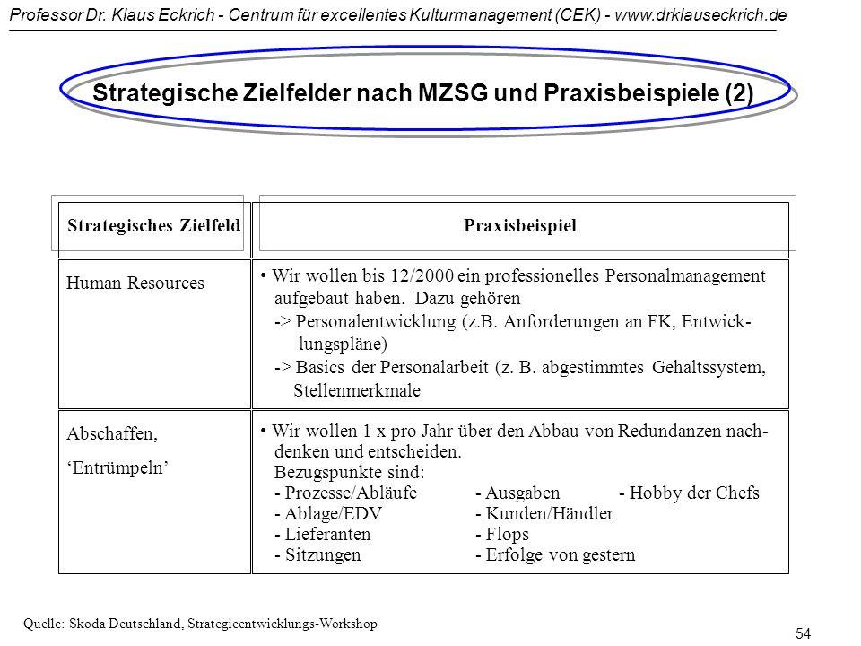 Strategische Zielfelder nach MZSG und Praxisbeispiele (2)