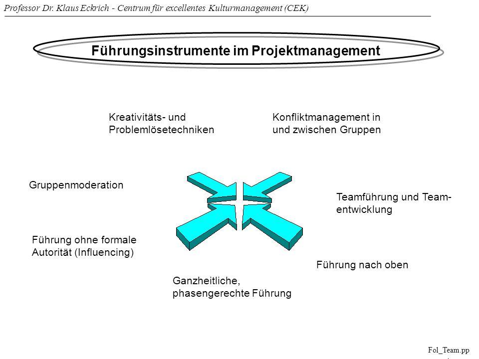 Führungsinstrumente im Projektmanagement