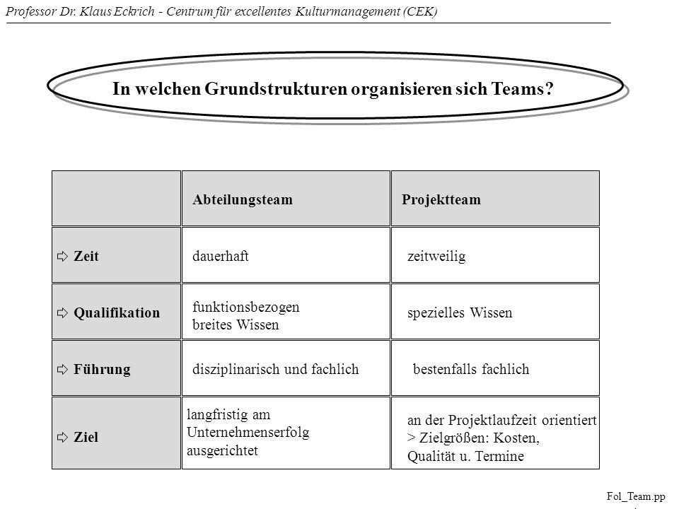 In welchen Grundstrukturen organisieren sich Teams