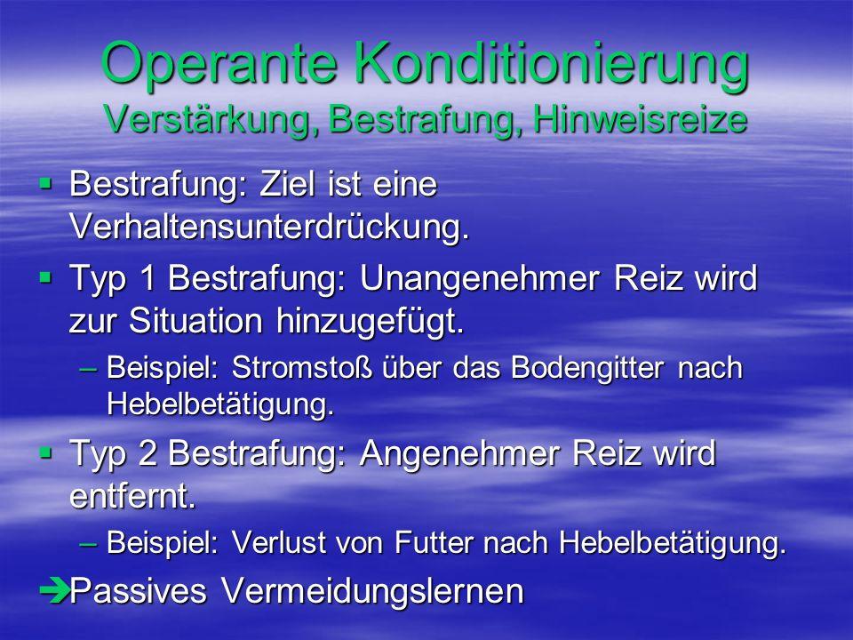 Operante Konditionierung Verstärkung, Bestrafung, Hinweisreize