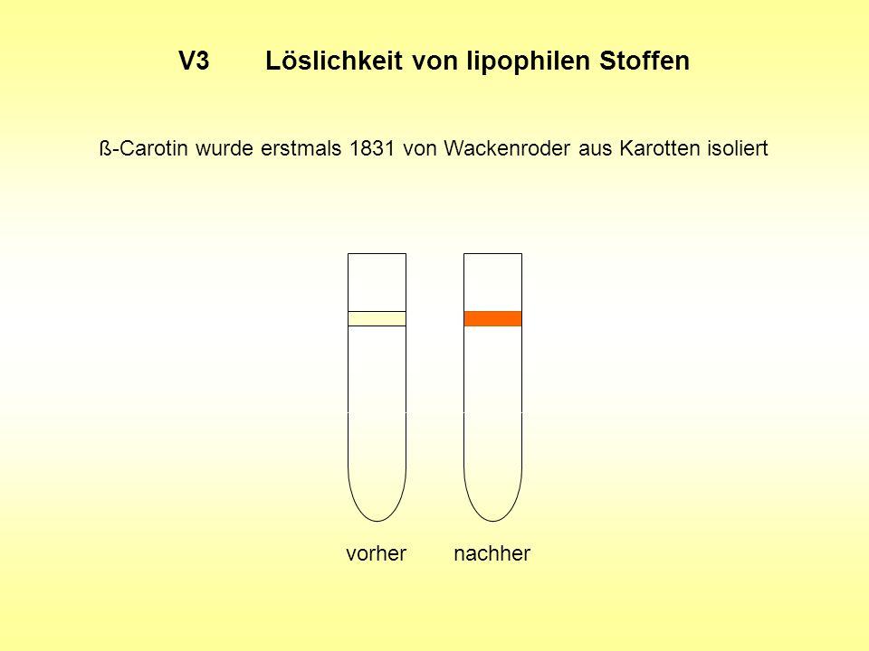 V3 Löslichkeit von lipophilen Stoffen