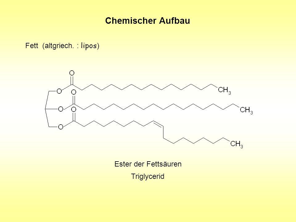 Chemischer Aufbau Fett (altgriech. : lipos) Ester der Fettsäuren