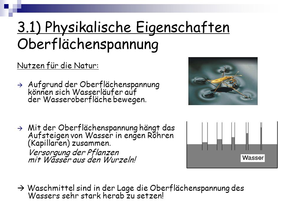 3.1) Physikalische Eigenschaften Oberflächenspannung