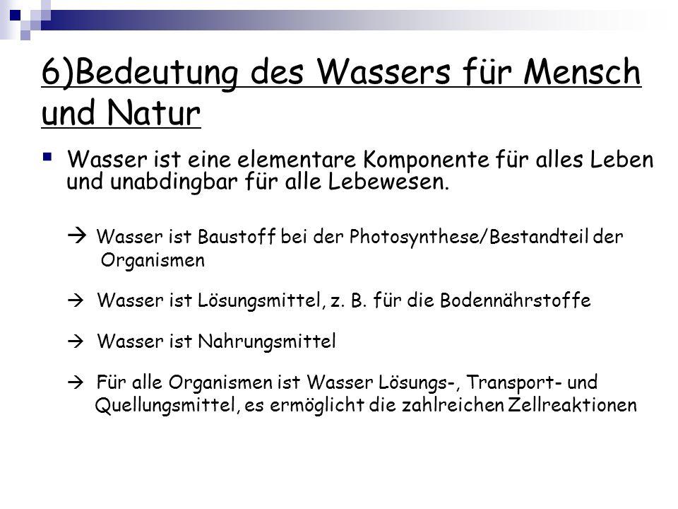 6)Bedeutung des Wassers für Mensch und Natur