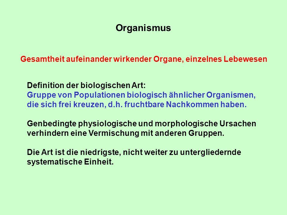 Organismus Gesamtheit aufeinander wirkender Organe, einzelnes Lebewesen. Definition der biologischen Art: