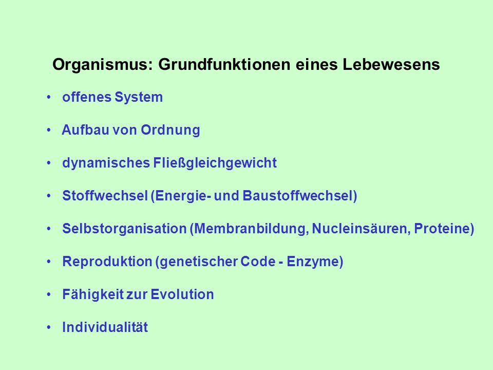 Organismus: Grundfunktionen eines Lebewesens