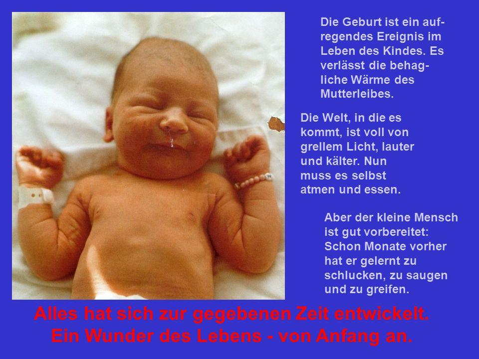 Die Geburt ist ein auf-regendes Ereignis im Leben des Kindes