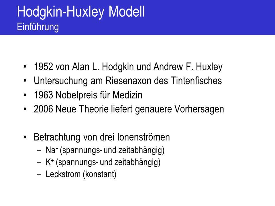 Hodgkin-Huxley Modell Einführung