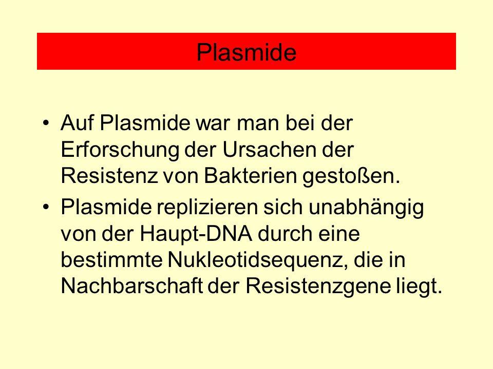 Plasmide Auf Plasmide war man bei der Erforschung der Ursachen der Resistenz von Bakterien gestoßen.