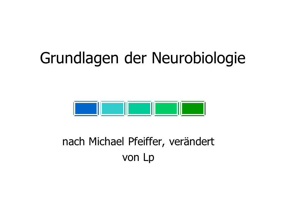 Grundlagen der Neurobiologie