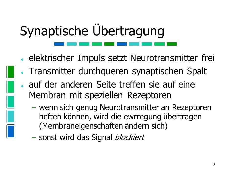Synaptische Übertragung