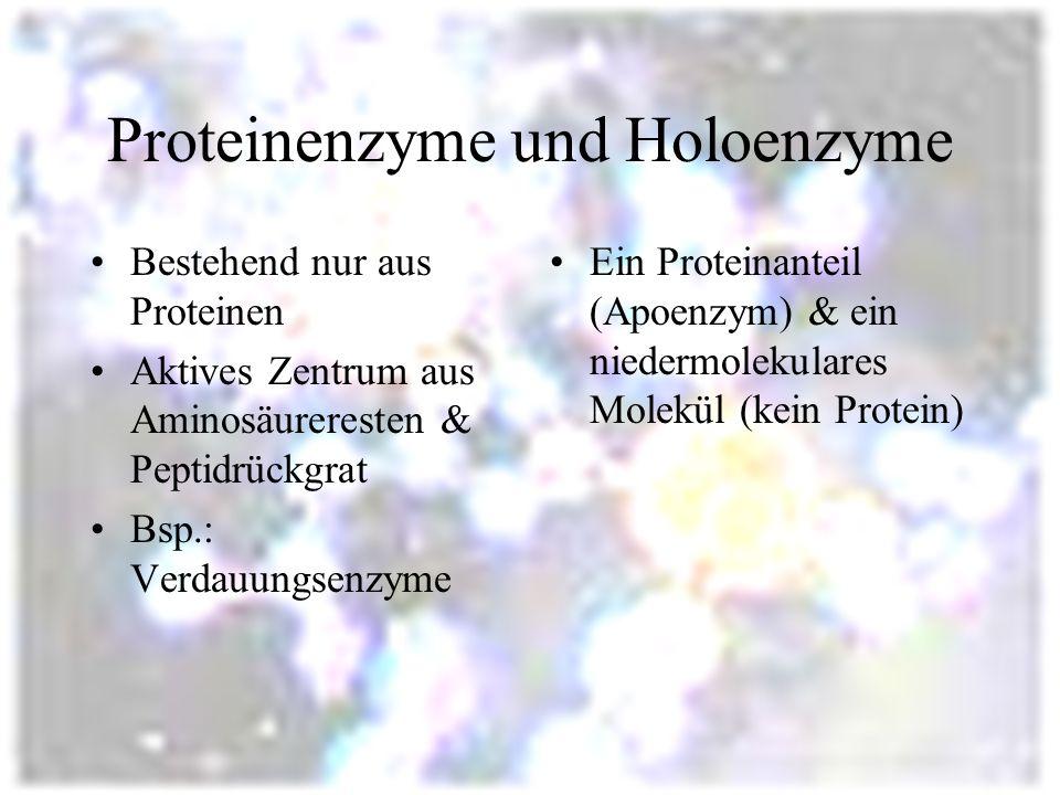 Proteinenzyme und Holoenzyme