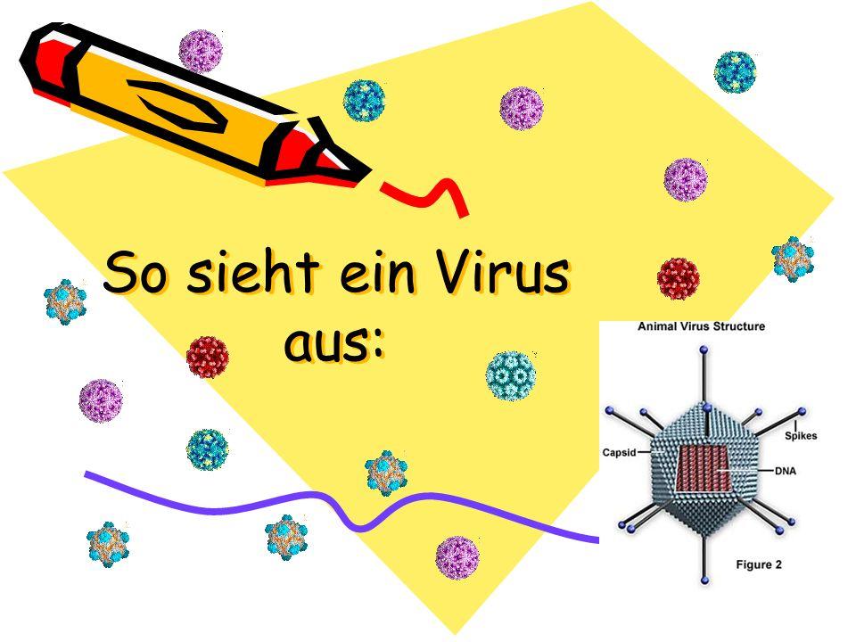 So sieht ein Virus aus: