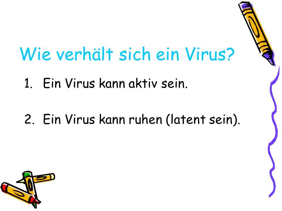 Wie verhält sich ein Virus