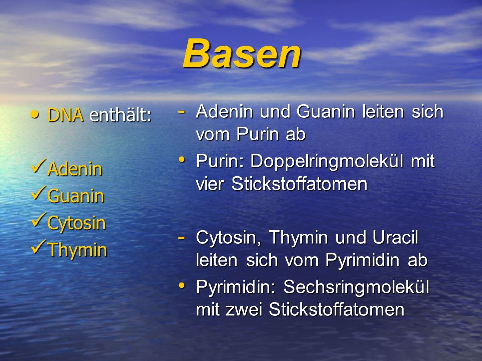 Basen Adenin und Guanin leiten sich vom Purin ab DNA enthält: