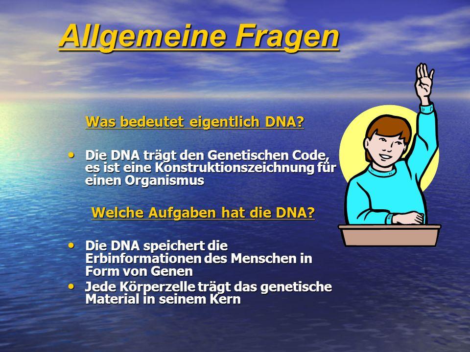 Allgemeine Fragen Welche Aufgaben hat die DNA