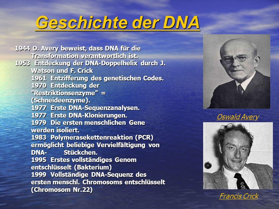 Geschichte der DNA Oswald Avery Francis Crick