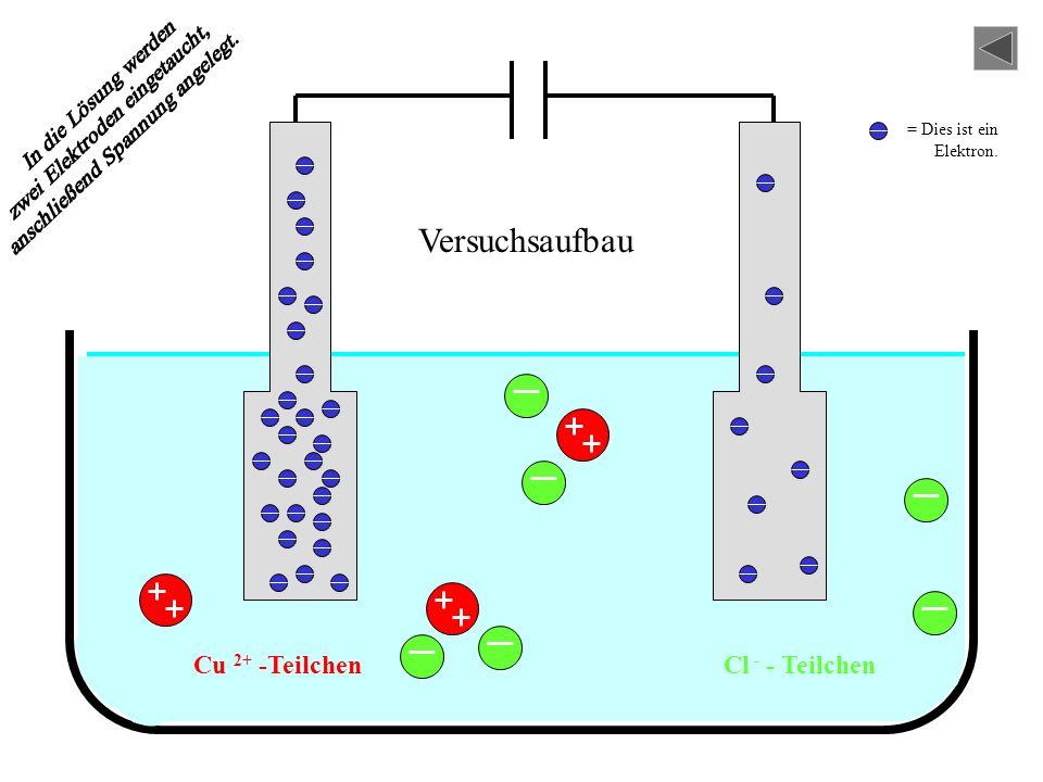 Versuchsaufbau Cu 2+ -Teilchen Cl - - Teilchen In die Lösung werden