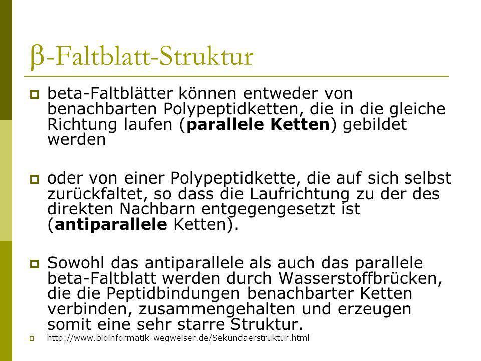 -Faltblatt-Struktur