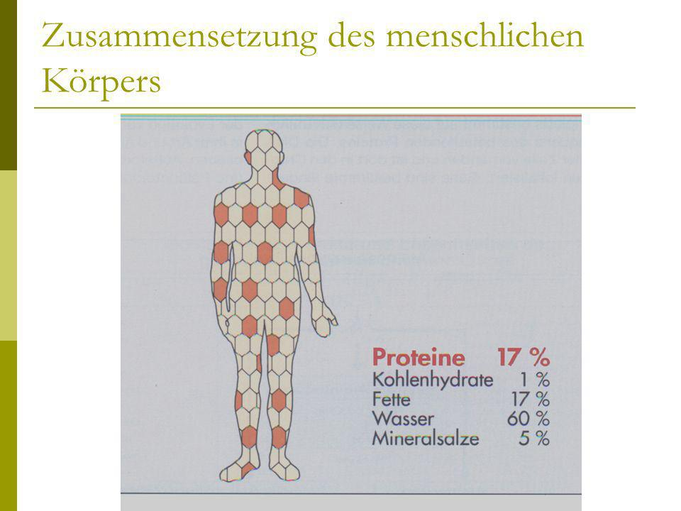 Zusammensetzung des menschlichen Körpers