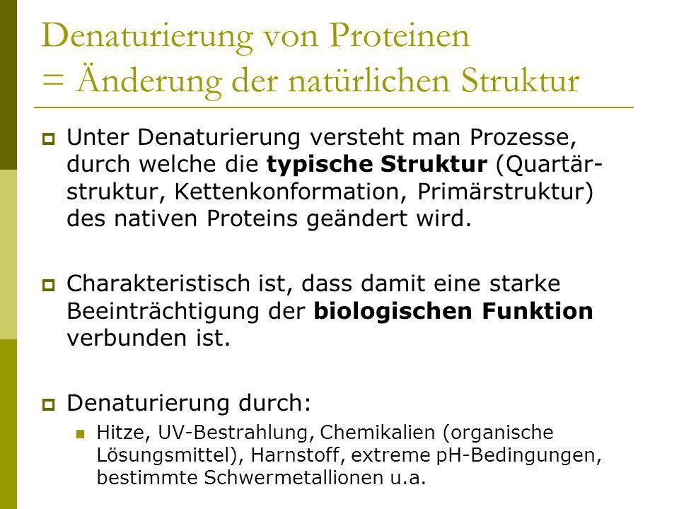 Denaturierung von Proteinen = Änderung der natürlichen Struktur
