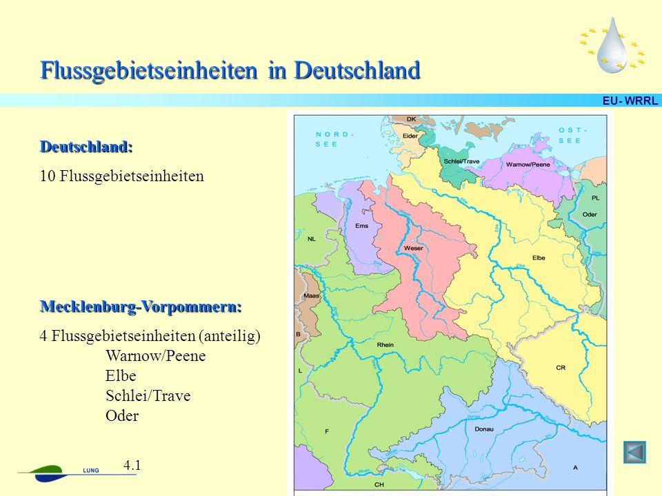 Flussgebietseinheiten in Deutschland