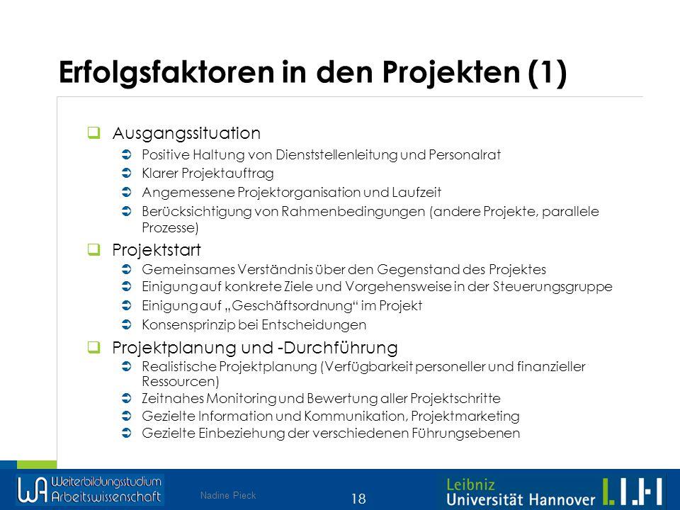 Erfolgsfaktoren in den Projekten (1)