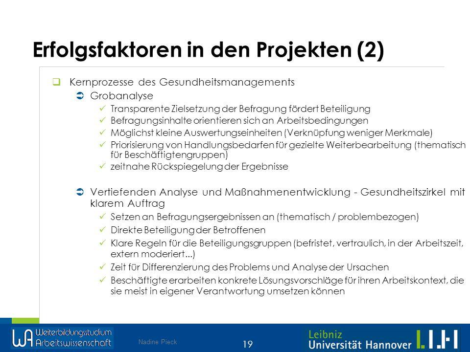 Erfolgsfaktoren in den Projekten (2)