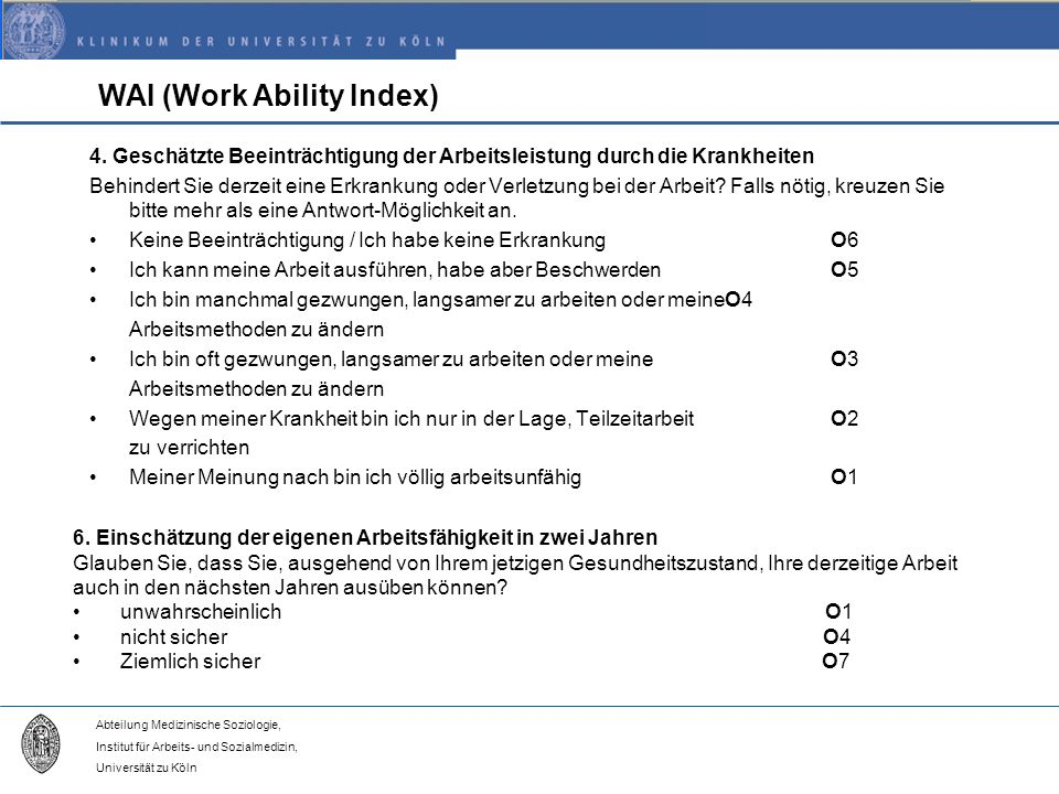 WAI (Work Ability Index)