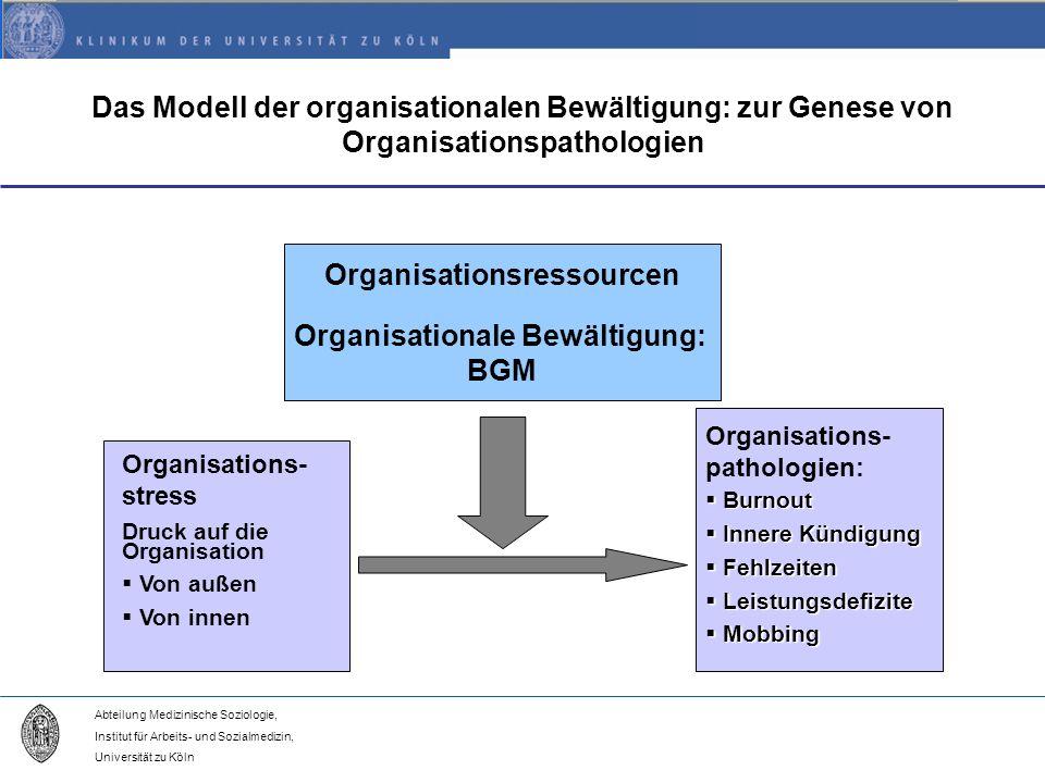 Organisationsressourcen Organisationale Bewältigung:
