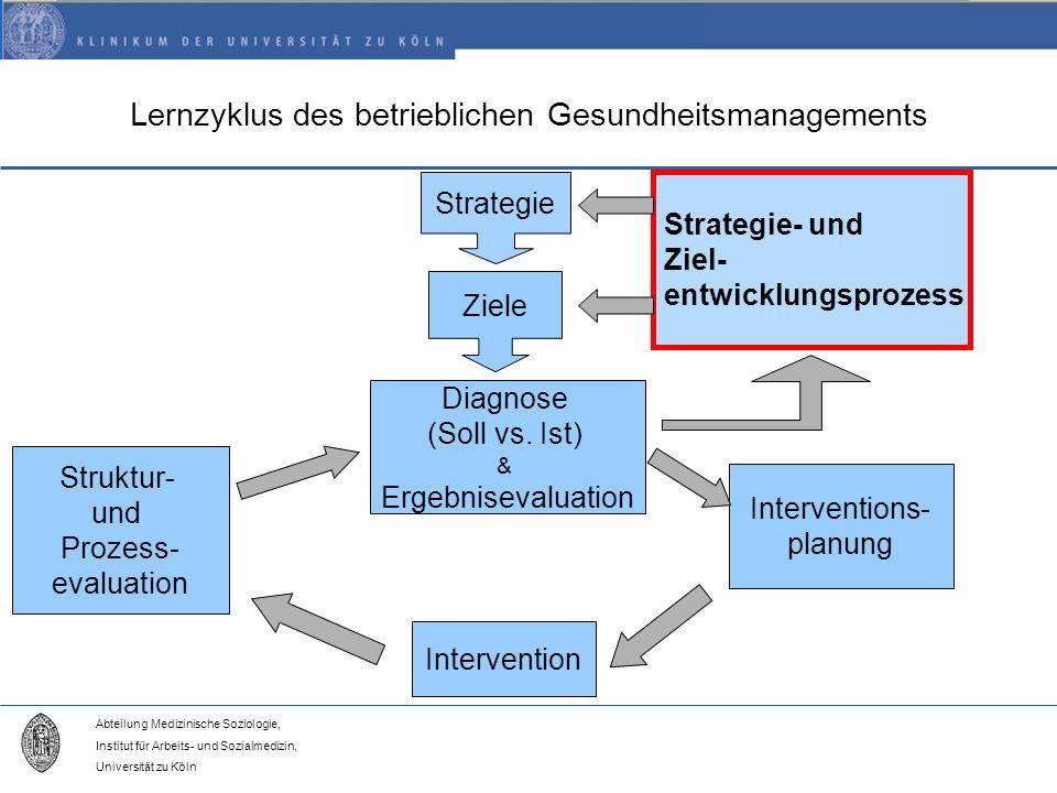 Lernzyklus des betrieblichen Gesundheitsmanagements