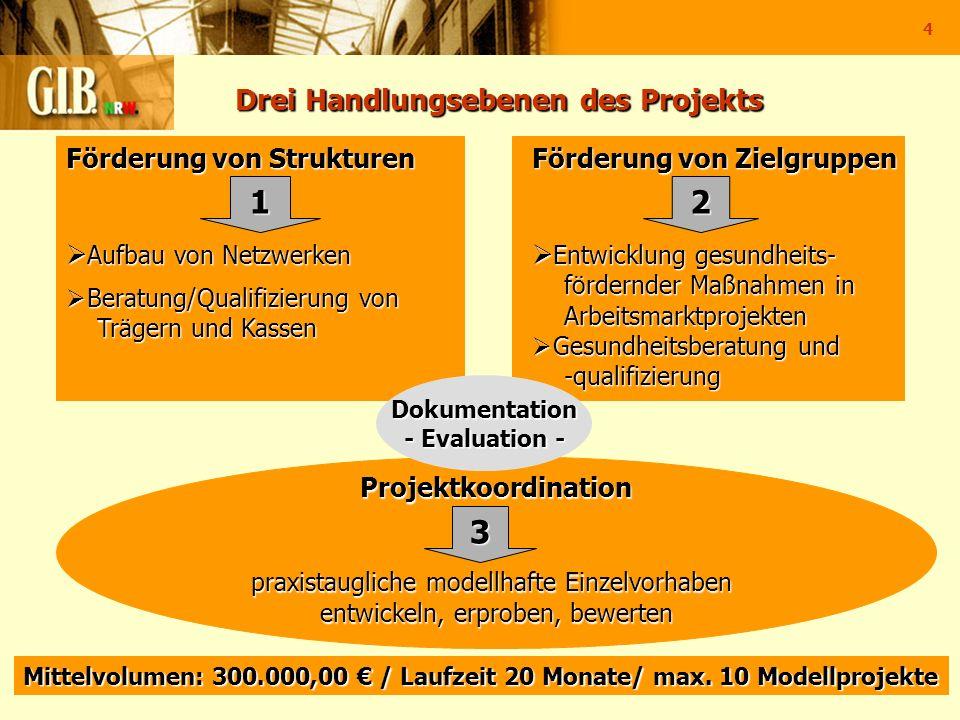 Drei Handlungsebenen des Projekts