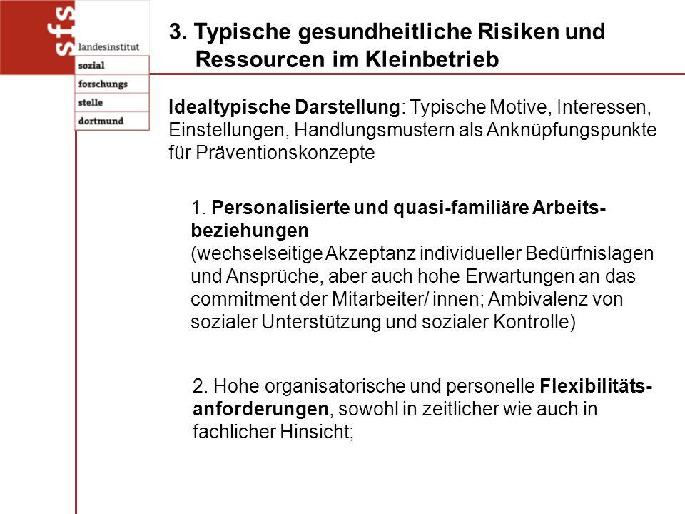 3. Typische gesundheitliche Risiken und Ressourcen im Kleinbetrieb