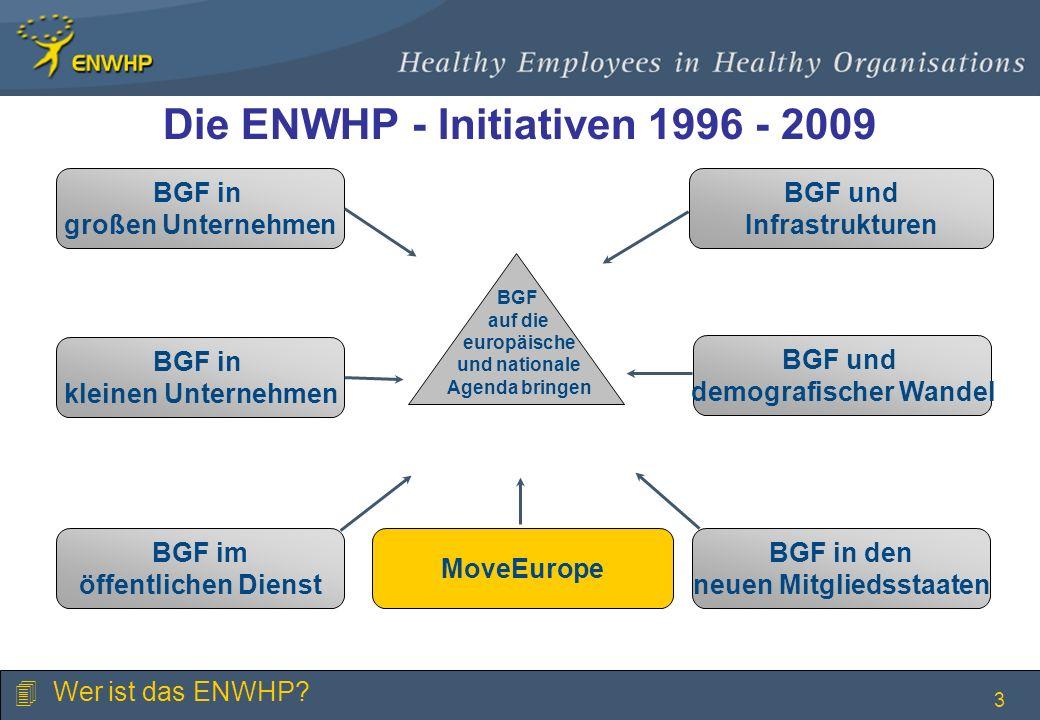 Die ENWHP - Initiativen 1996 - 2009