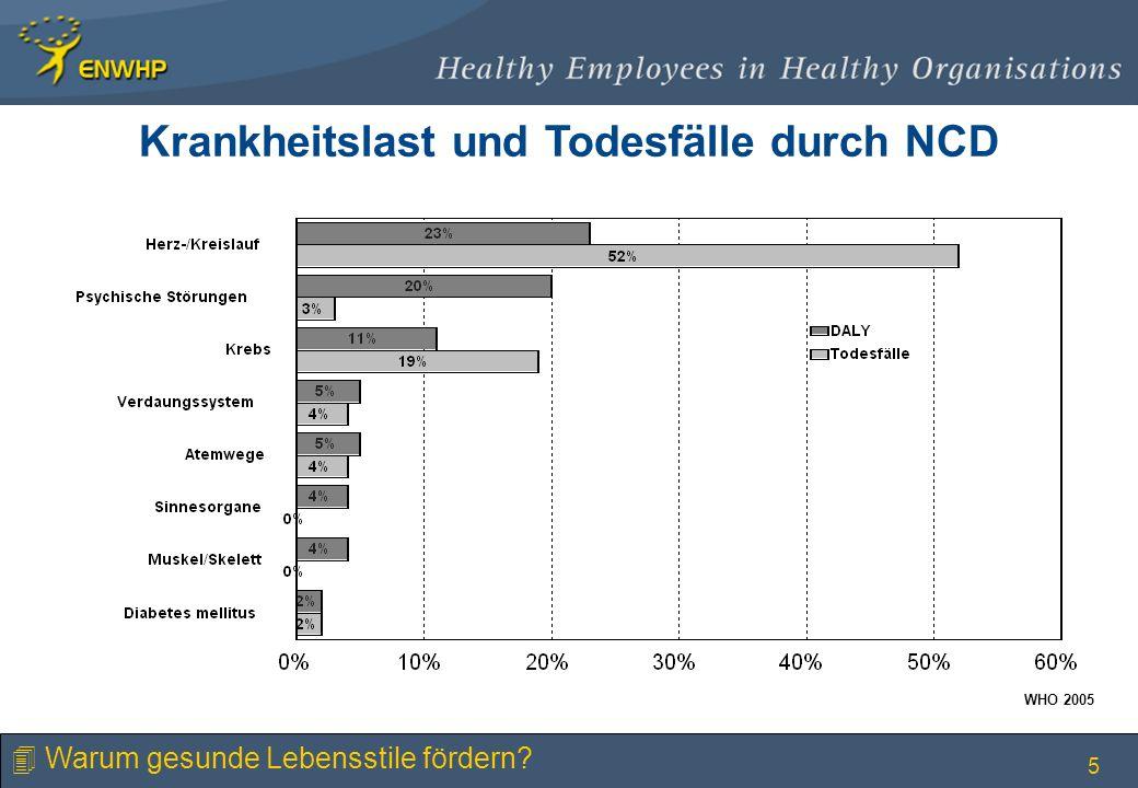 Krankheitslast und Todesfälle durch NCD