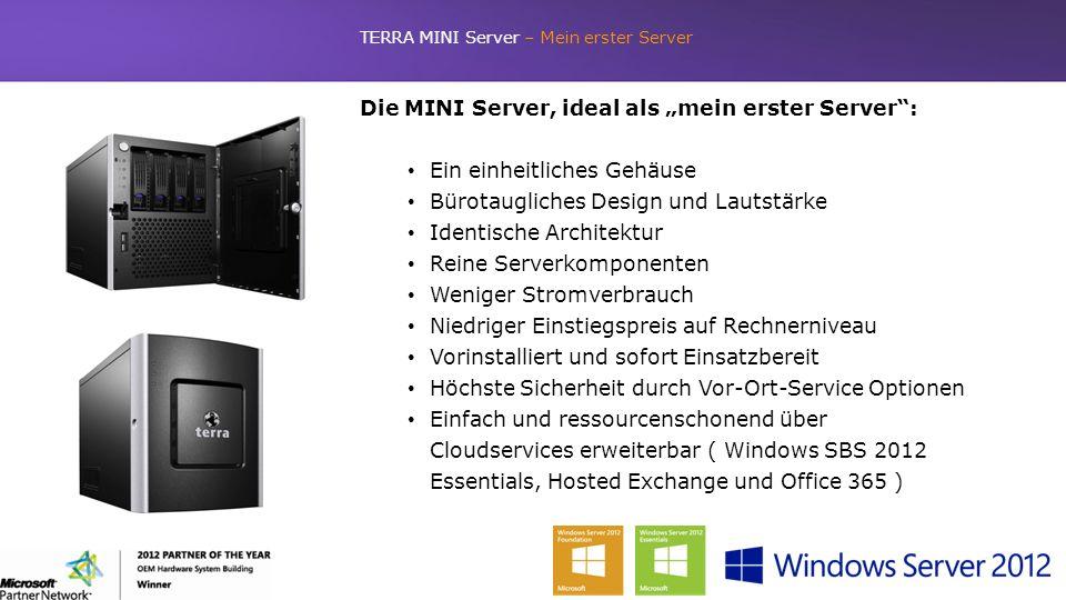 TERRA MINI Server – Mein erster Server