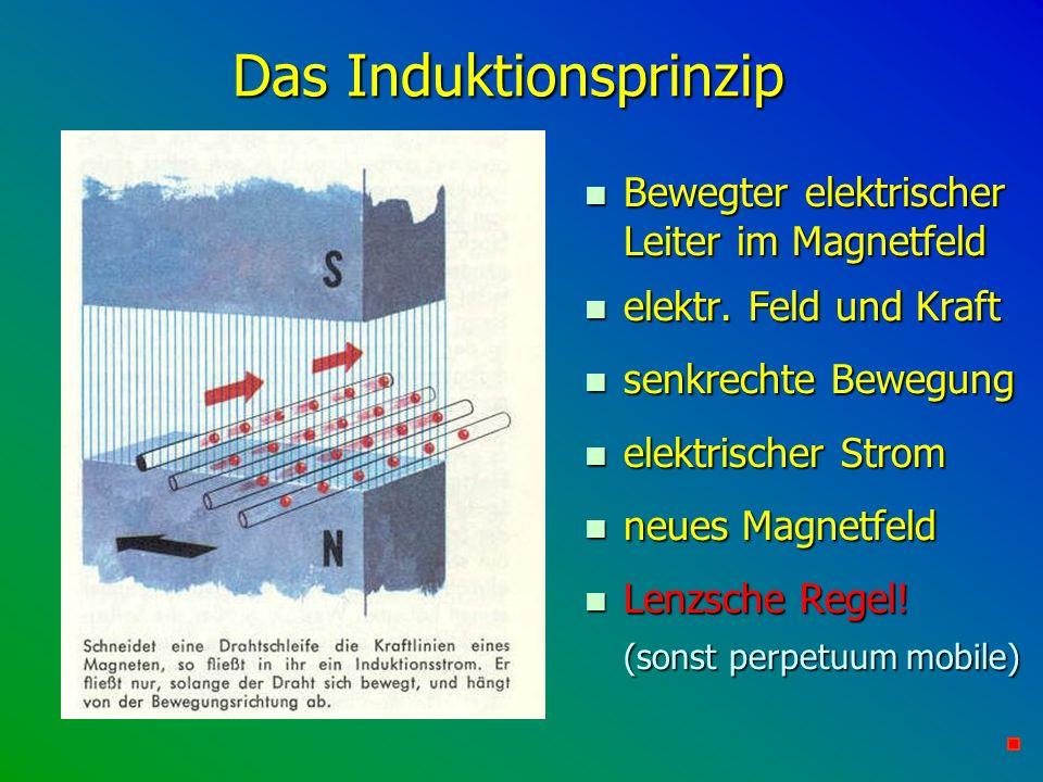 Das Induktionsprinzip