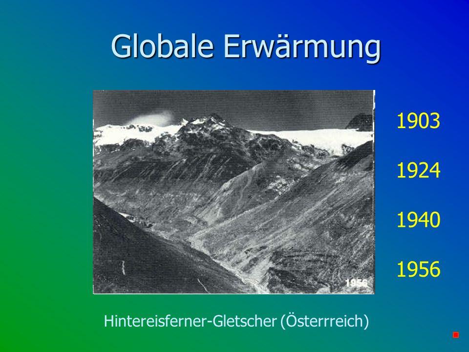 Hintereisferner-Gletscher (Österrreich)