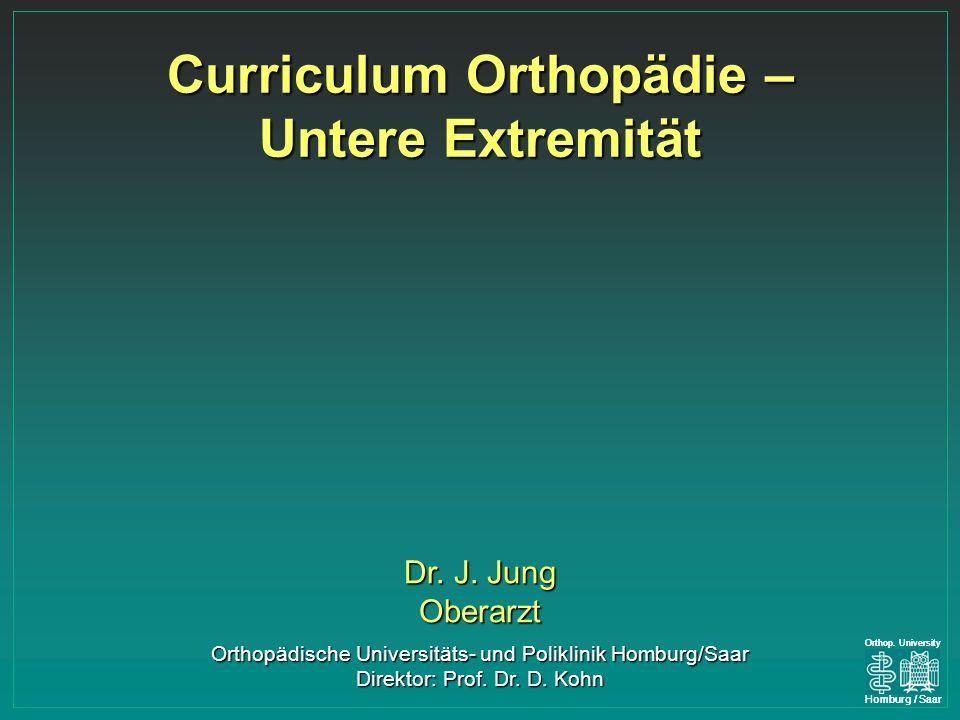 Curriculum Orthopädie – Untere Extremität