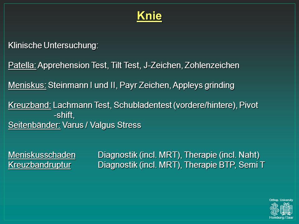 Knie Klinische Untersuchung:
