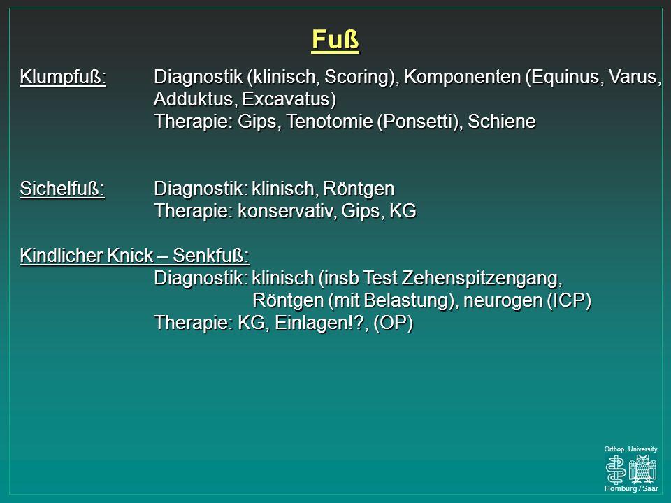 Fuß Klumpfuß: Diagnostik (klinisch, Scoring), Komponenten (Equinus, Varus, Adduktus, Excavatus) Therapie: Gips, Tenotomie (Ponsetti), Schiene.