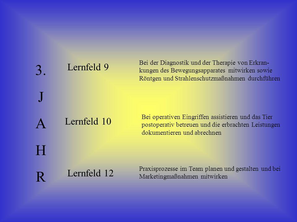 3. J A H R Lernfeld 9 Lernfeld 10 Lernfeld 12