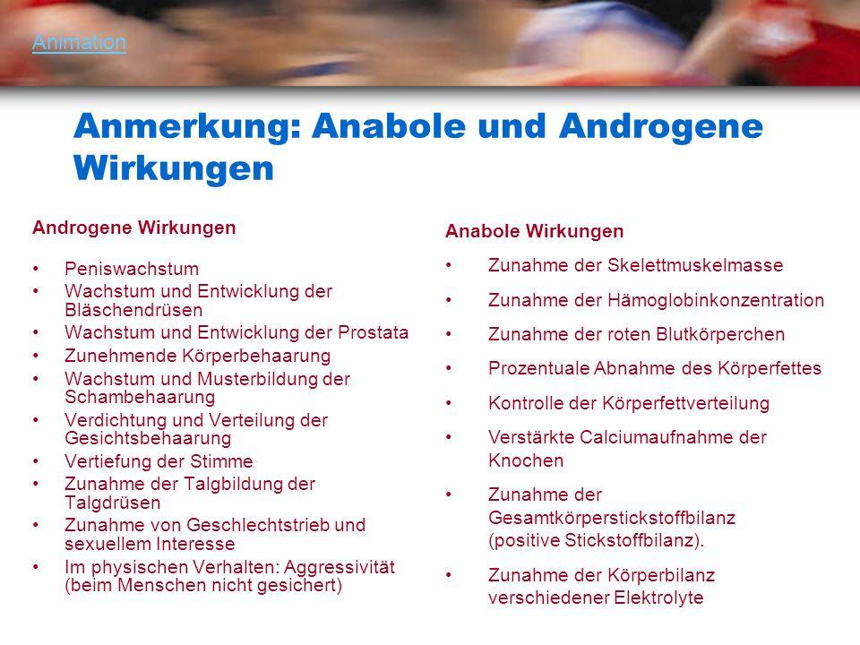 Anmerkung: Anabole und Androgene Wirkungen